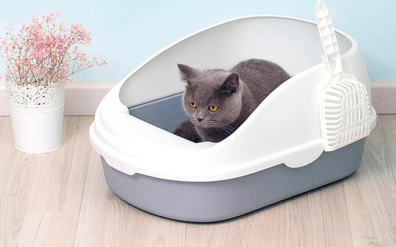 Лоток Semi-open cat litter фото