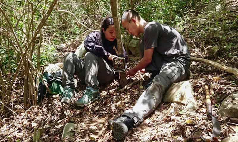 Биологи в лесу фото