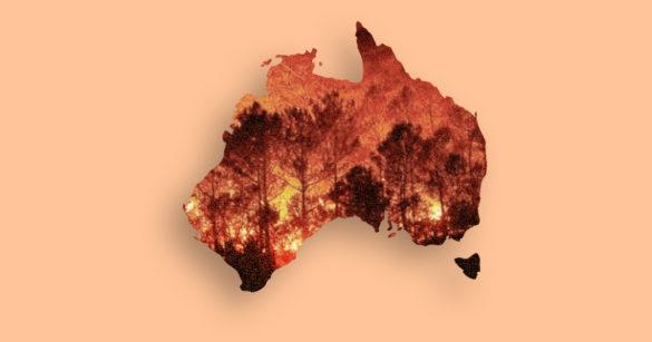 Горящая Австралия иллюстрация