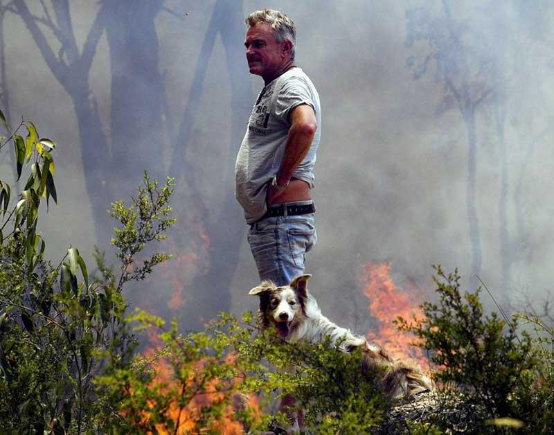 Лесные пожары в Австралии фото