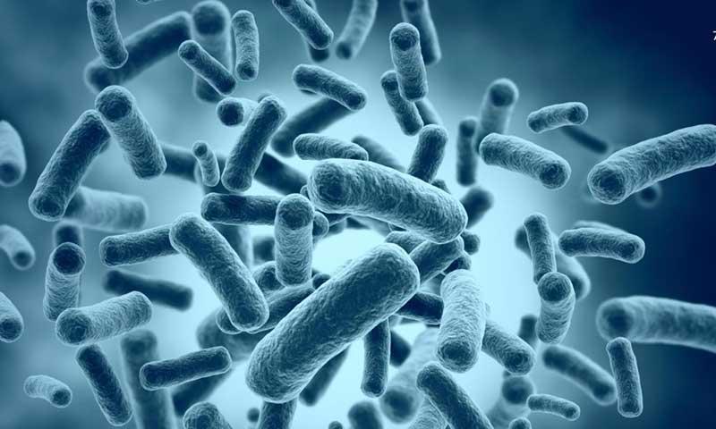 Микроорганизмы иллюстрация