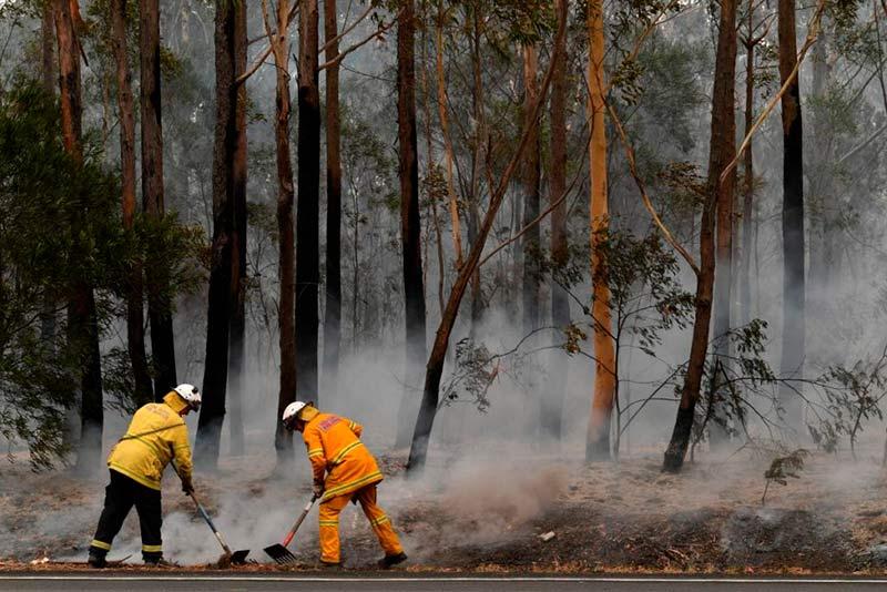 В Австралии пошел дождь. Он потушил пожары, но вызвал наводнение