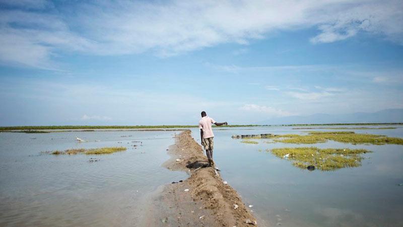 Экологические беженцы фото