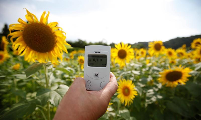 Радиоактивные растения фото