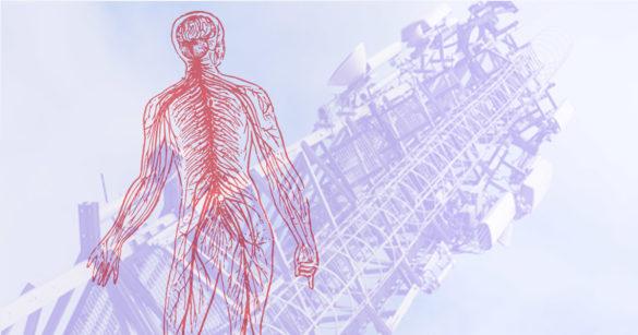 Влияние 5G на организм человека