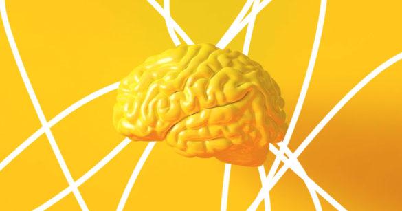 Ученые выяснили, что когнитивные способности людей достигают пика в 35 лет